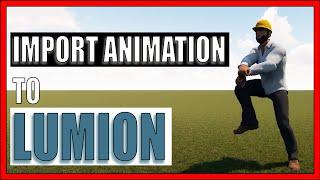 mapa animado animación