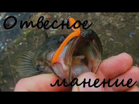 """Способы ловли ротана на спиннинг - ОТВЕСНОЕ МАНЕНИЕ (""""Дрочинг"""")"""
