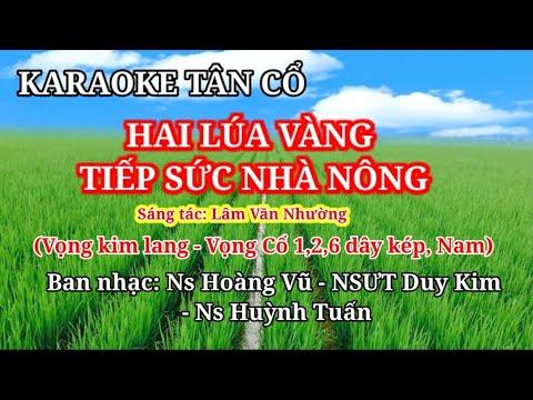 Hai Lúa Vàng Tiếp Sức Nhà Nông. Karaoke Tân Cổ - Vọng Kim Lang- Vọng Cổ 1,2,6 dây kép. TONE NAM