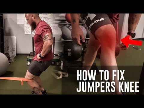 The Best Exercises to Fix Jumpers Knee! | Phil Daru