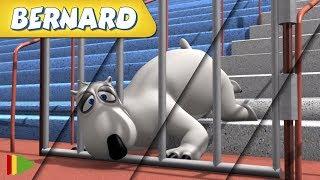 Bernard Bear | Zusammenstellung von Folgen | Sprint