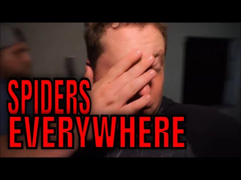 (MIDNIGHT AT THE HAUNTED SPIDER HOUSE) WITCHES HOUSE NEIGHBOR. EVIL LIVES HERE