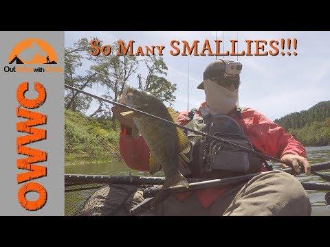 The Umpqua Series - So Many Smallmouth!  Part 1