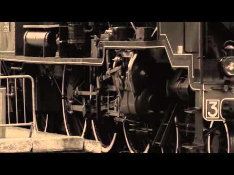 Trains by Reginald Gardiner