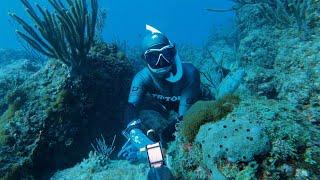 Майами Затопило Вырвались на Подводную Охоту