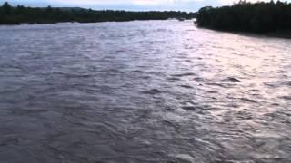 Річка Прут,Заболотів.15.05.2014