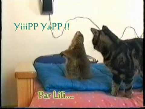 LiLi et Popop's !