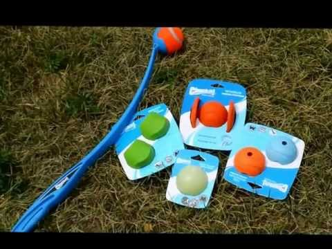 Mighty Pet Chuck it dog launcher pet toy demonstration
