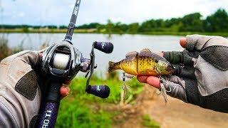 Fishing BIG Jigs & Swimbaits for TROPHY BASS!!!