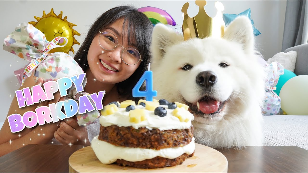 My Dog Got The Best Birthday Surprise Ever! [With DIY Dog Birthday Cake Recipe]
