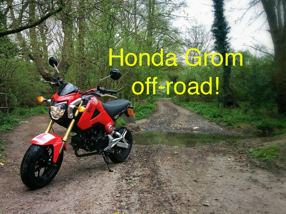 2015 Honda Grom >> Honda Grom/MSX125 off roading with a Yamaha DT - YouTube