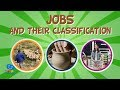 Jobs and their classification: Primary, Secondary & Tertiary sector | Educational Videos for Kids