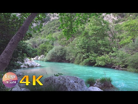 Gentle river-Relaxing water sound-Nightingale song-Soothing river sounds-Sleep Relax Study-4K video