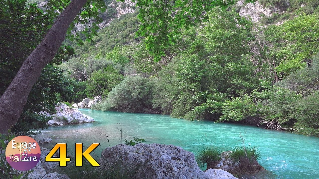 Tropical Island Beach Ambience Sound: Gentle River-Relaxing Water Sound-Nightingale Song