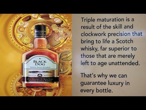 Black Dog Triple Gold Reserve | Blended Scotch Whishky | English Wine Showroom  | Punit Randhawa |
