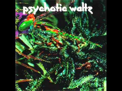 PSYCHOTIC WALTZ MosquitoFull Album