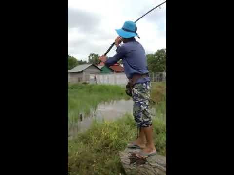 Cambodia Rural Fishing at Field