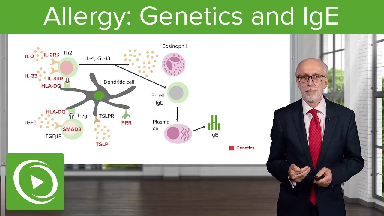 Allergy: Genetics and IgE – Immunology | Lecturio