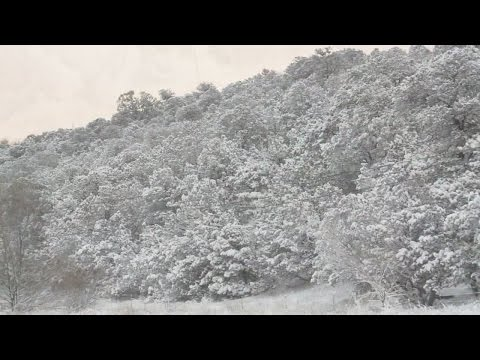 Snowy weather hits NM, dusts ABQ