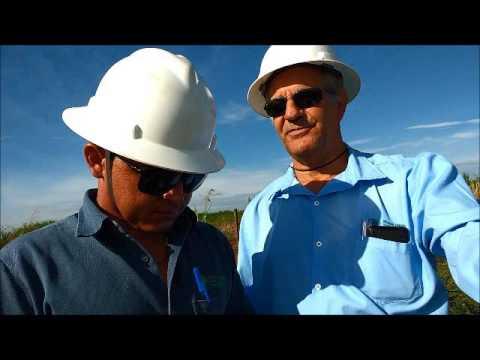State Grid Brazil Holding utiliza solução móvel em campo