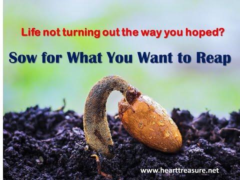 Devotional 351 - 'You reap what you sow ' (Galatians 6.6-10)