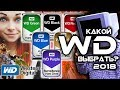 КАКОЙ WESTERN DIGITAL ВЫБРАТЬ? WD BLUE, WD RED, WD BLACK, WD GOLD, WD GREEN, WD PURPLE