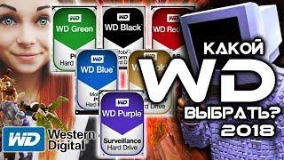 КАКОЙ WESTERN DIGITAL ВЫБРАТЬ? WD BLUE, WD RED, WD BLACK, WD GOLD, WD GREEN, WD PURPLE