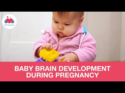 Baby Brain Development Tips During Pregnancy