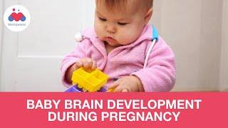 Baby Brain Development Tips During Pregnancy screenshot 3