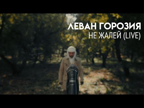 Леван Горозия - Не Жалей