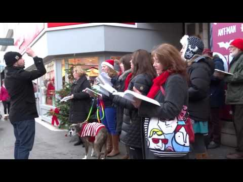 Amateur Operatic Society Singing Christmas Market Perth Perthshire Scotland
