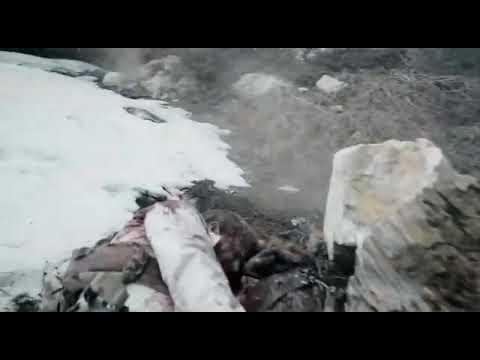 Download seal team season 4 episode 2 bravo team rescues jaison and Cerberus
