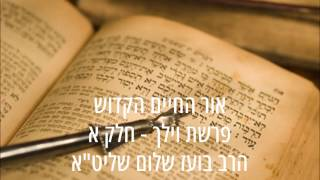 ✡✡✡ אור החיים הקדוש - פרשת וילך - חלק א ✡✡✡