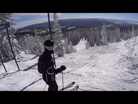 Tree Skiing Steamboat Springs (Alarm Clock Run)