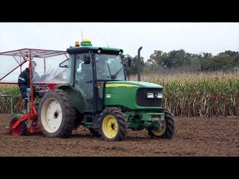 Grundlagen der Hybridweizen-Produktion (Teil 2/2)