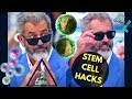How to Boost Stem Cell Growth Naturally - MEL GIBSON STEM CELL HACKS