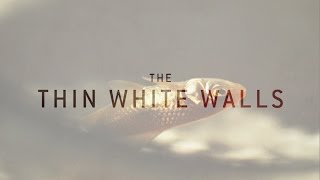 Fishy (ft. Josh Ruben) | The Thin White Walls