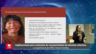 Video presentación: Silvana Baldovino