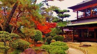 岸和田 五風荘 Japanese residence of restaurant & the Japanese Garden 元お屋敷和食レストラン&素晴らしい日本庭園Part1