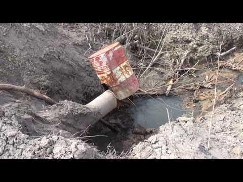 ЛИВНЫ САХАР травит реку Труды и Сосна