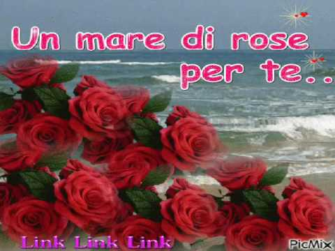 Un fiore per te YouTube