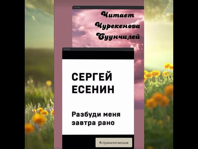 Изображение предпросмотра прочтения – СуунчилейЧурекенова читает произведение «Разбуди меня завтра рано…» С.А.Есенина