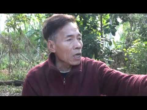 My Father Journey