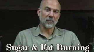 Fat Burning, Diet, Weight Loss & Sugar, Austin Wellness