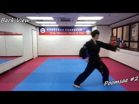Taekwondo - Poomsae 2 (Yi Jang) Slow-motion, Front And Back View
