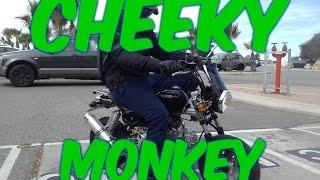 monkey bike review