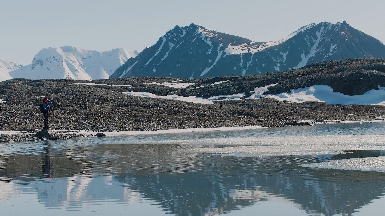 【動画】白夜の高緯度北極圏 野生生物と美しい風景