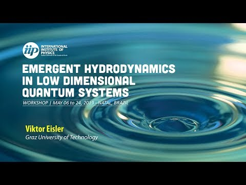 Domain-wall melting and hydrodynamics - Viktor Eisler