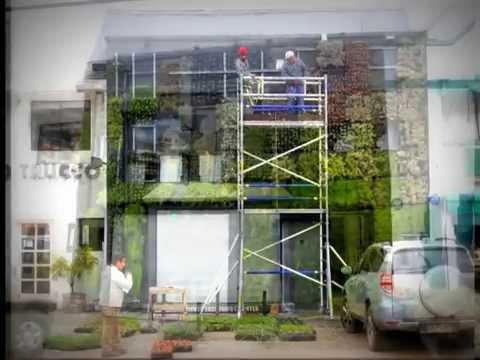 Muro verde paisajismo vertical youtube for Paisajismo vertical