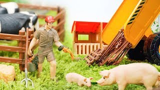 Setup Toy Farm With Farm Animals For Kids